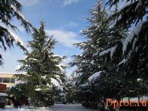 Дилиджан зимой
